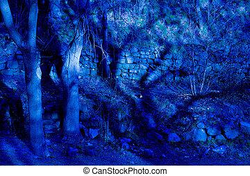 azul, fantasia, crepúsculo, floresta