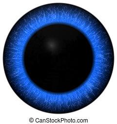 azul, grande, olho, ilustração