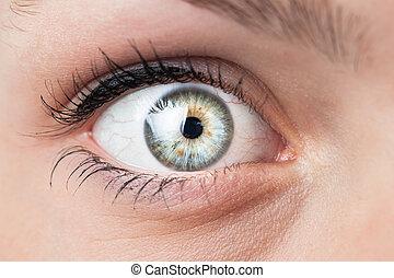 azul, hermoso, primer plano, ojo, hembra