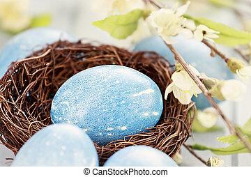 azul, huevo de pascua, en, nido