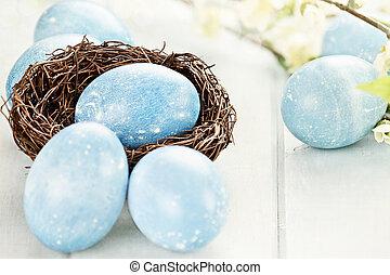 azul, huevos de pascua, y, nido