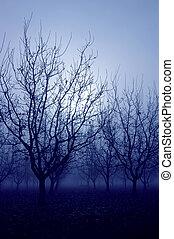 azul, humor, árboles