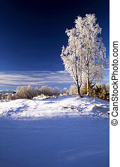 azul, inverno, dia