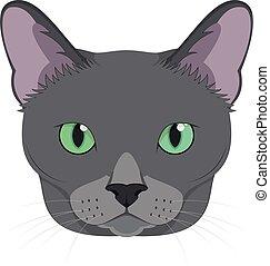 azul, isolado, ilustração, gato, vetorial, fundo, russo, branca