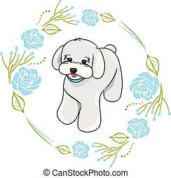 azul, lindo, marco, rosas, blanco, perrito