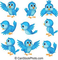 azul, lindo, pájaro, caricatura