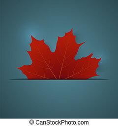 azul, maple folheiam, fundo, vermelho