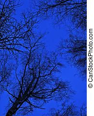 azul, morning.