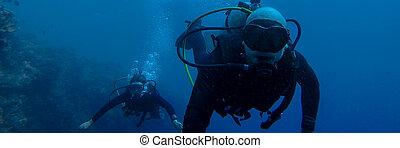 azul, mulher, fundo mar, mergulhar, homem