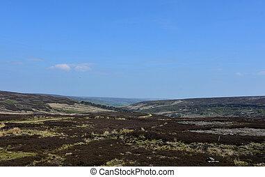 azul, norteño, encima, páramo, yorkshire, maravilloso,...