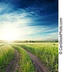 azul, nuvens, sobre, céu, aquilo, profundo, campo, verde, horizonte, rural, pôr do sol, estrada