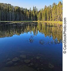 azul, oscuridad, superficial, lago, otoño, temprano, morning...