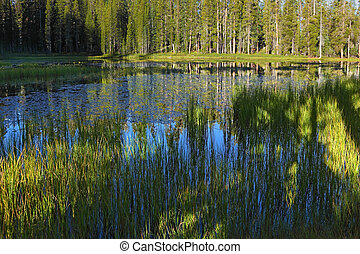 azul oscuro, superficial, lago