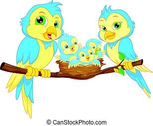 azul, pássaros, família
