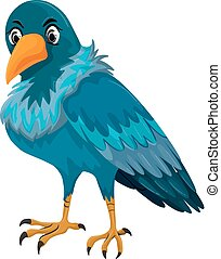 azul, pena, pássaro