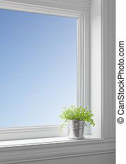 azul, planta, alféizar, cielo grande, por, ventana., limpio,...
