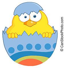 azul, polluelo, cáscara, pascua, amarillo