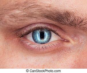 azul, primer plano, ojo, hombre