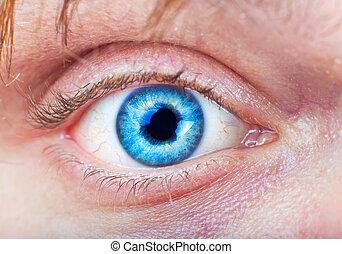 azul, primer plano, ojo
