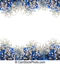 azul, ramo, flores blancas, hydrangeas