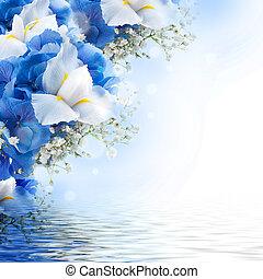 azul, ramo, irises, hydrangeas, flores blancas