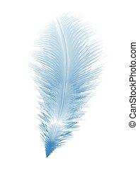 azul, realista, pluma, suave