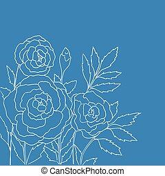azul, rosas, aislado, hermoso