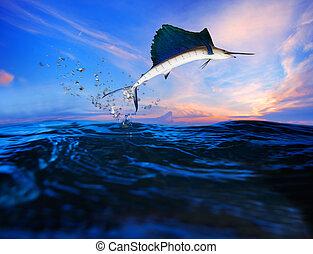 azul, sailfish, encima, vuelo, océano, mar