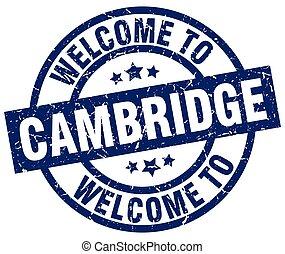 azul, selo, cambridge, bem-vindo