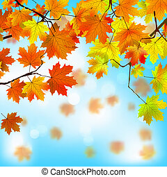 azul, sky., folhas, eps, amarela, contra, 8, vermelho