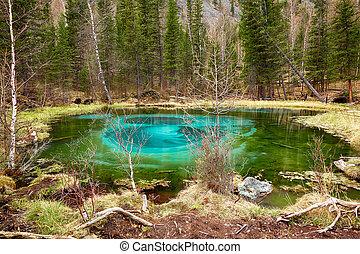 azul, so-called, altay, gêiser, montanhas, lago