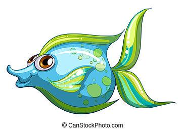 azul, stripe-colored, cola de los pescados, grande