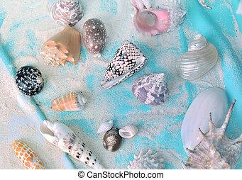 azul, toalha, cobrança, areia, seashells, praia