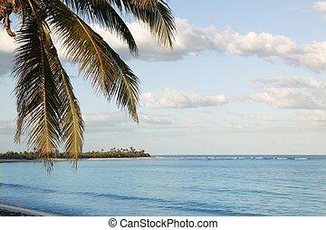azul, tropical, vista marina, playa, en, quintana roo,...
