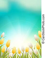 azul, tulipanes, cielo, tipografía, campo, brillante