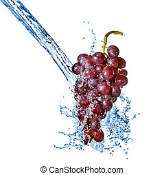 azul, uva, con, agua, salpicadura, aislado, blanco
