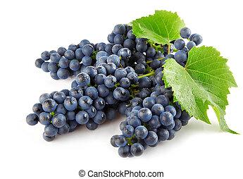 azul, uva, con, hojas verdes, aislado, fruta