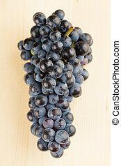 azul, uva, grupo