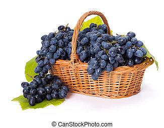 azul, uva, racimos, en, cesta