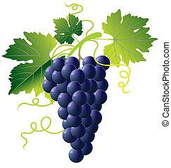 azul, uvas, ramo