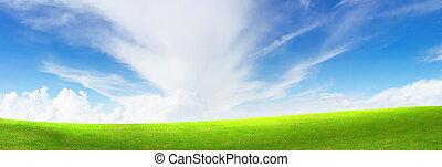azul, verde, brillante, pasto o césped, cielo