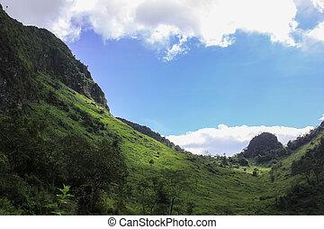 azul, verde, cielo, colinas, rodante