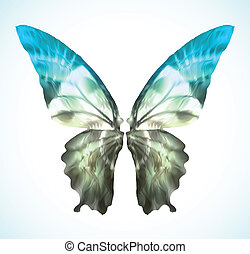 azul, vibrante, vector, mariposa, isolated.