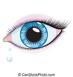 azul, woman\'s, olho