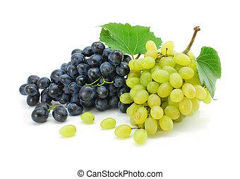 azul y verde, uva, fruits, aislado