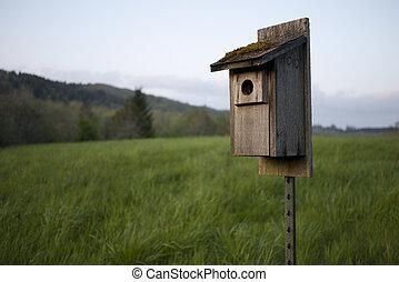 azulejo, birdhouse