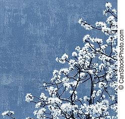 azzurramento, albero, fondo