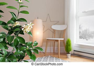 azzurramento, albero limone, in, uno, confortevole, soggiorno, con, uno, vista