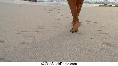 bábu jár, szakasz, mezítláb, alacsony, napos, tengerpart, ...