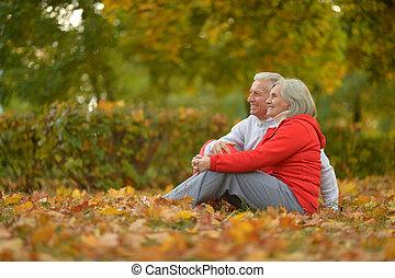 bágyasztó, párosít, idősebb ember, liget